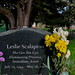 #359 : At the Bolinas grave of Leslie Scalapino