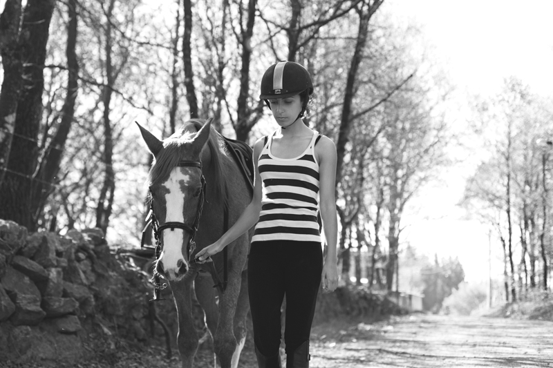 Horse-008