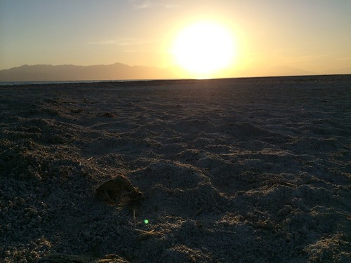Salt Creek Beach, Salton Sea