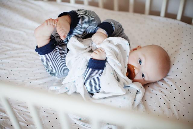 Beck - 6 months