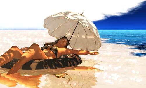 Lazy Days in the Sun