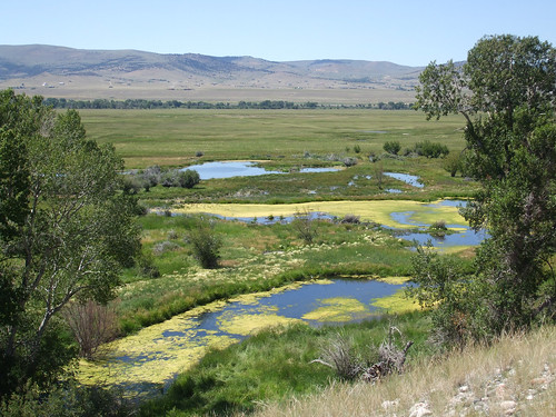NRCS and other partners are working to restore the wetlands located at the headwaters of O'Dell Creek in Montana. NRCS photo.