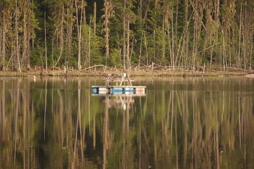 camping canada bc okanagan bairdlake