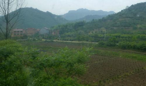 Zhejiang-Yushan-Wenzhou-train (8)