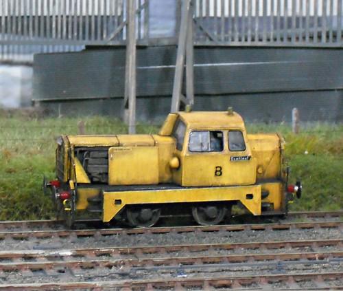 Yellow Sentinel