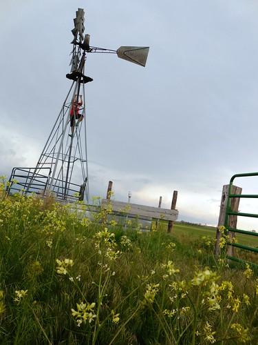 Ash checking windmill