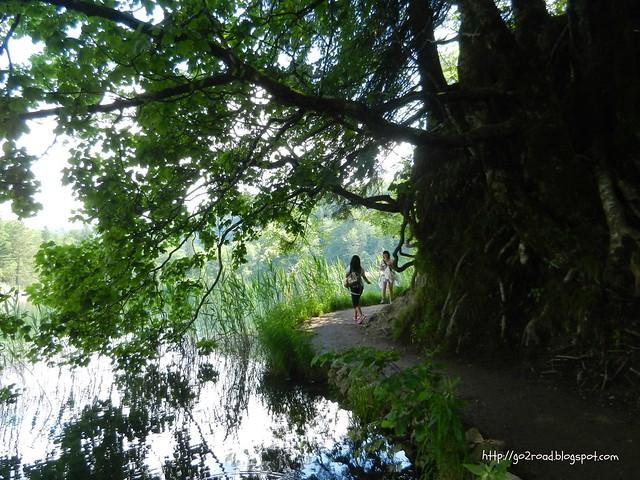 Плитвицкие озера, тропинки