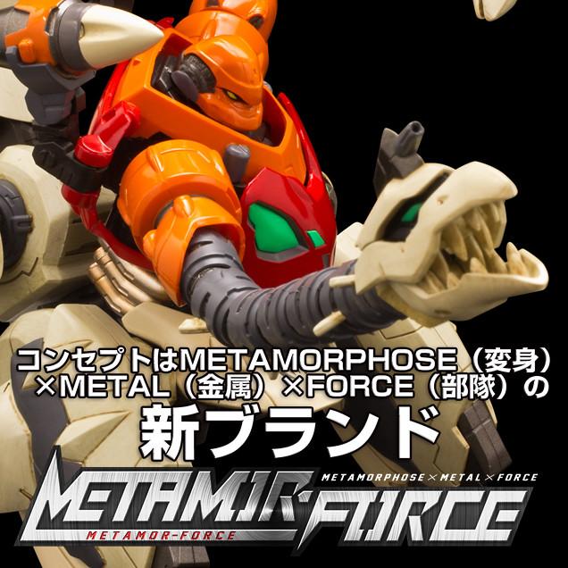 9_metamor_003_J