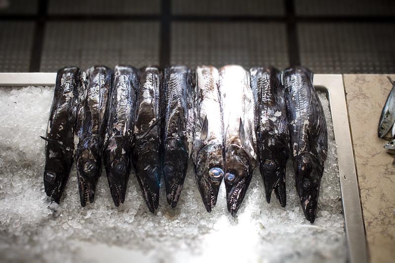 Black scabbardfish in Mercado dos Lavradores #6 - Funchal, Madeira