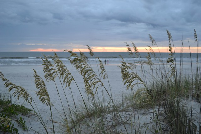 Jax Beach July 2014