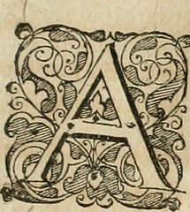 "Image from page 298 of ""Anatomiae amphitheatrvm effigie triplici, more et conditione varia, designatvm"" (1623)"