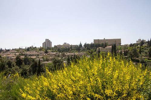 city israel day jerusalem oldcity israele storvandre pwpartlycloudy