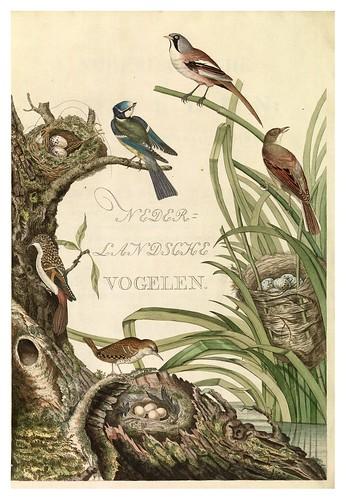 001-Portada del tomo 1- Nederlandsche vogelen- Nationale bibliotheek van Nederland