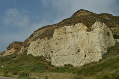 Cliffs at Newhaven