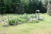 Meadow Garden - July 29, 2014