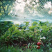 strawberries (if you look hard enough) by Liis Klammer