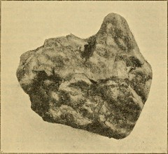 """Image from page 282 of """"The Quarterly journal of the Geological Society of London"""" (1845)"""