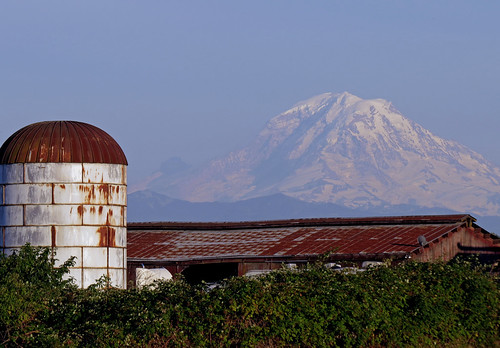 mountain barn volcano silo washingtonstate mtrainier auburnwa shesnuckinfuts july2014