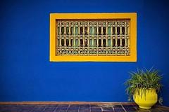 Los jardines de Majorelle, Marrakech.  www.marruecosentusmanos.com marruecosentusmanos@gmail.com  #marruecos #morocco #marrakech #jardinmajorelle #jardin #colores #paisajes #paraiso #oasis #belleza #vida #tradicion #relax #descanso #viajeros #viajar #viaj