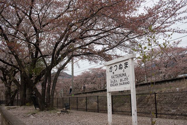 20150412-甲州高尾山-0657.jpg