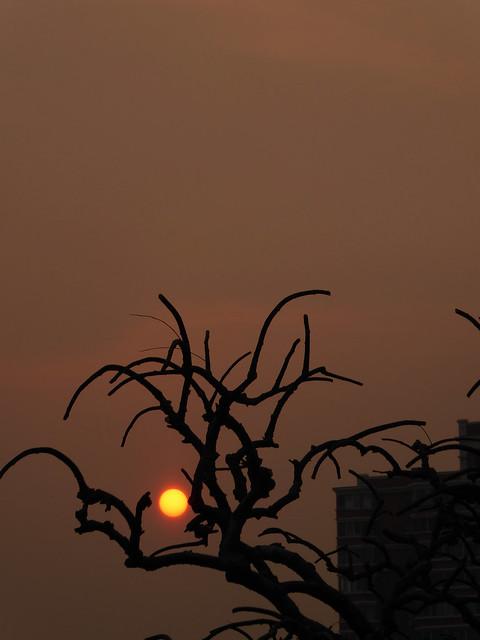 Beijing sunset ( Explore #311 5/4/07), Panasonic DMC-TZ70