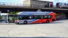WMATA Metrobus 2016 New Flyer Xcelsior XN40 #2897