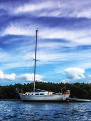 Sailboat (Color)