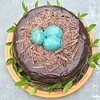 This gorgeous and delicious Robin's Egg Chocolate Cake recipe is on my blog. Don't miss it if you are a chocolate lover!! Yum! #livinglocurto #chocolate #cake #recipe #yum