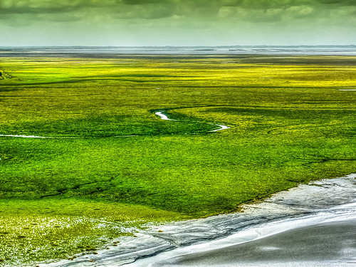 panorama verde green yellow jaune landscape view vert pointofview giallo normandie normandy montsaintmichel normandia gastone gastonemappini mappini