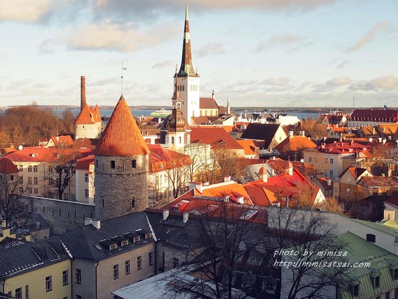 愛沙尼亞 塔林 旅遊 (31)