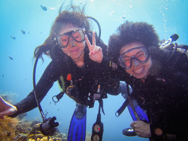 Dive 234