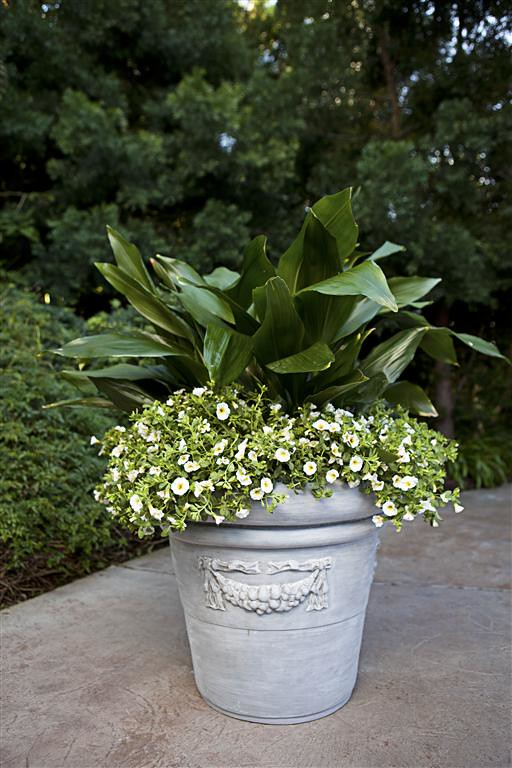 Rolled Rim Garland Planter
