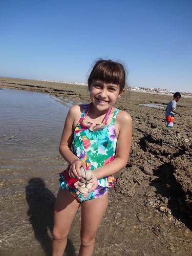Kimberly's clams