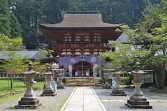 shrine149