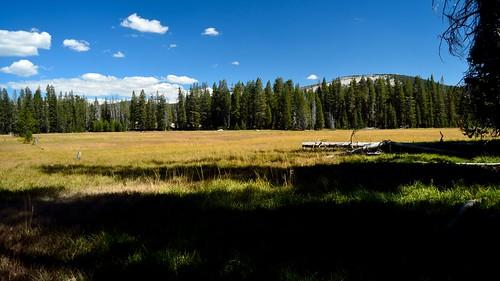 Big Meadows 02