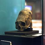 Mon, 06/30/2014 - 9:29pm - Paracas skull 1