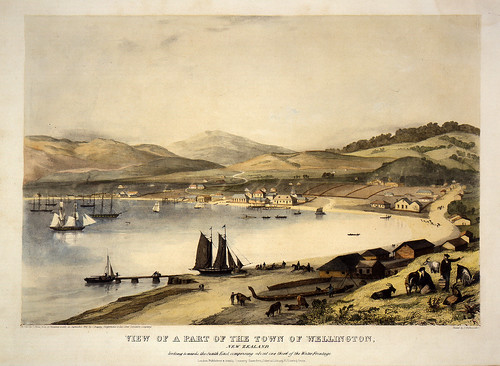 007- Vista de la ciudad de Wellington-Nueva Zelanda-Heaphy, Charles, 1841-Museo Te PapaTongareva