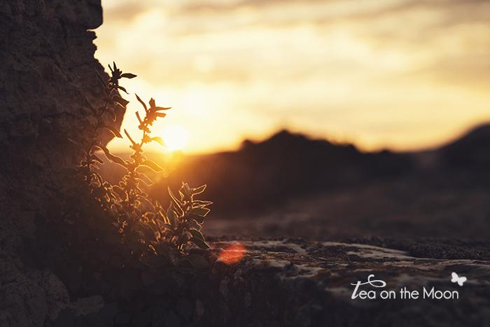 Inspira 2014 Siurana de Prades amanecer
