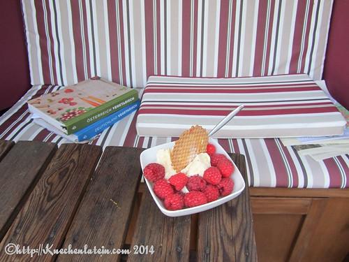 ©homemade Vanilleeis mit selbst gepflücken Himbeeren