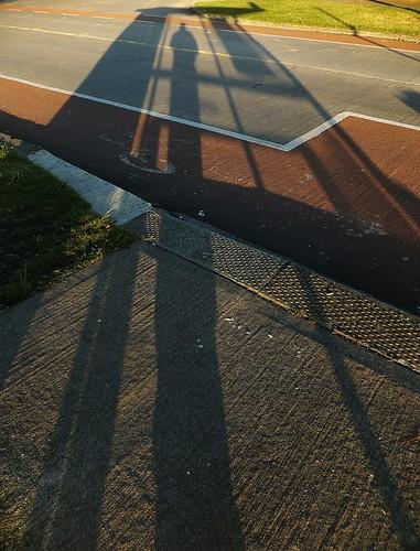 ireland shadow dublin irish bus nature animals silhouette shadows busstop dub selfie naturesbeauties naturescreations