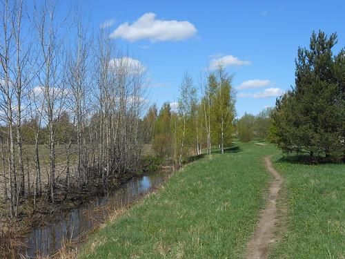 Niittynäkymä, Pohjois-Tapiola Espoo 15.5.2014