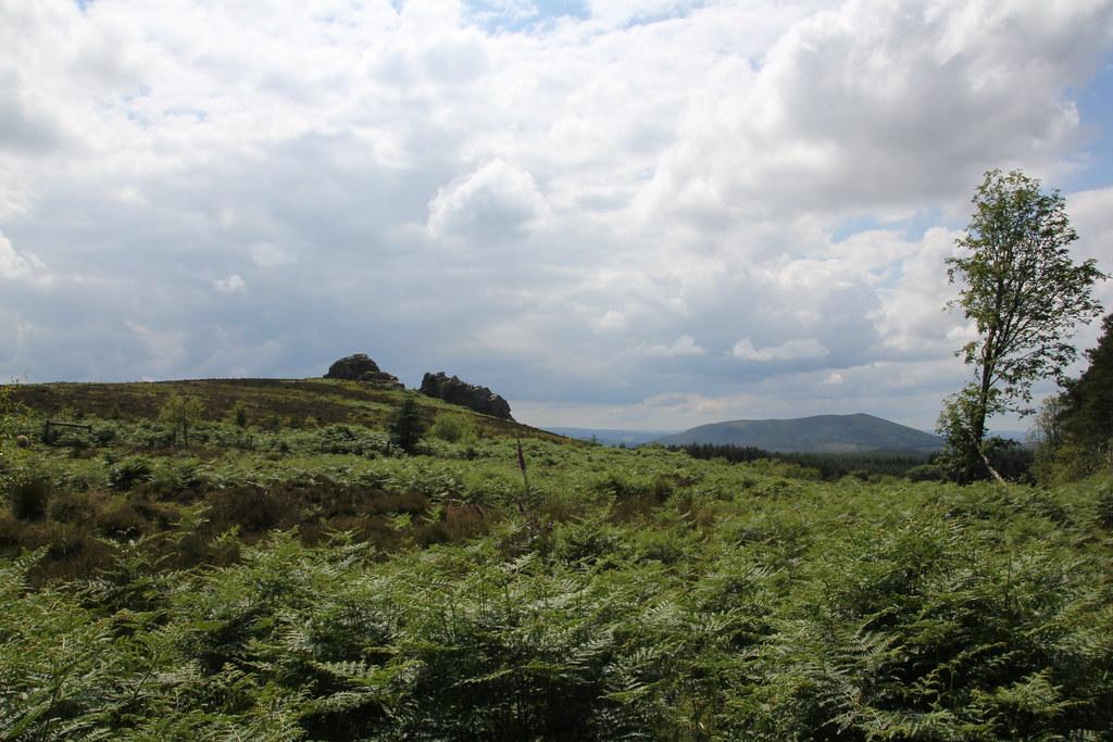 stiperstones, shropshire, bridges, kinnerton, birchope, linley hill, nipstone rock, manstone rock, cranberry rock, devils chair, hollies, shepherds rock, rock house
