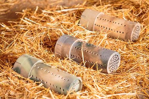 Barn Hunt Examples-4257