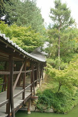 Walkway at garden in Kyoto