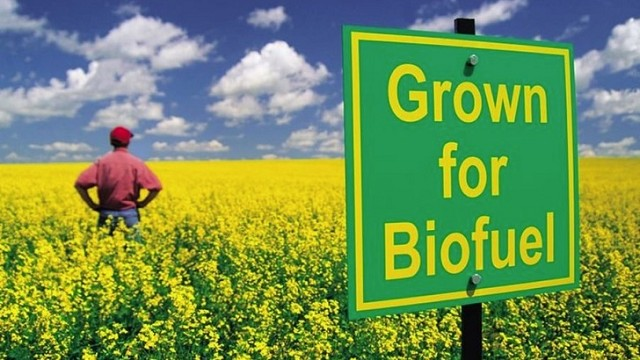 eu-limits-production-of-biofuels-made-from-food-crops-83609_1
