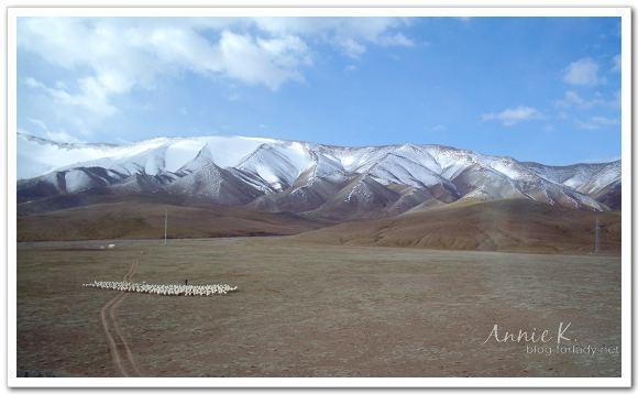 青藏風景2