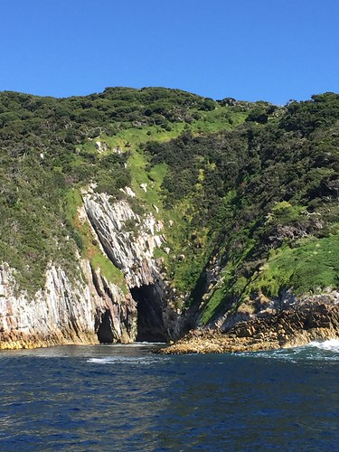 Breaksea Islands, Bathurst Channel. South West Tasmania.