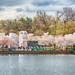 Tidal Basin Cherry Blossoms 37-2-2.jpg