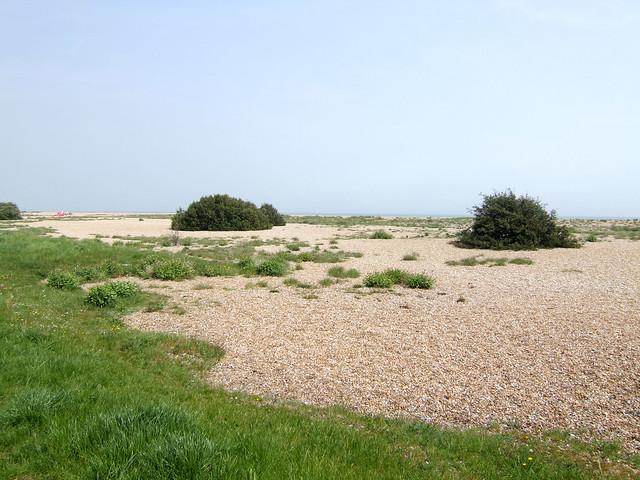 The beach at Walmer