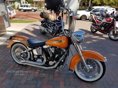 Harley Davidson Motorcycle Custom